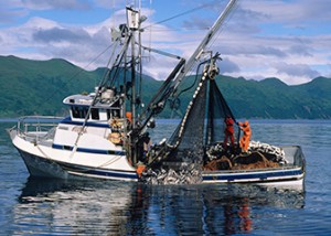 Fishing, the most dangerous job