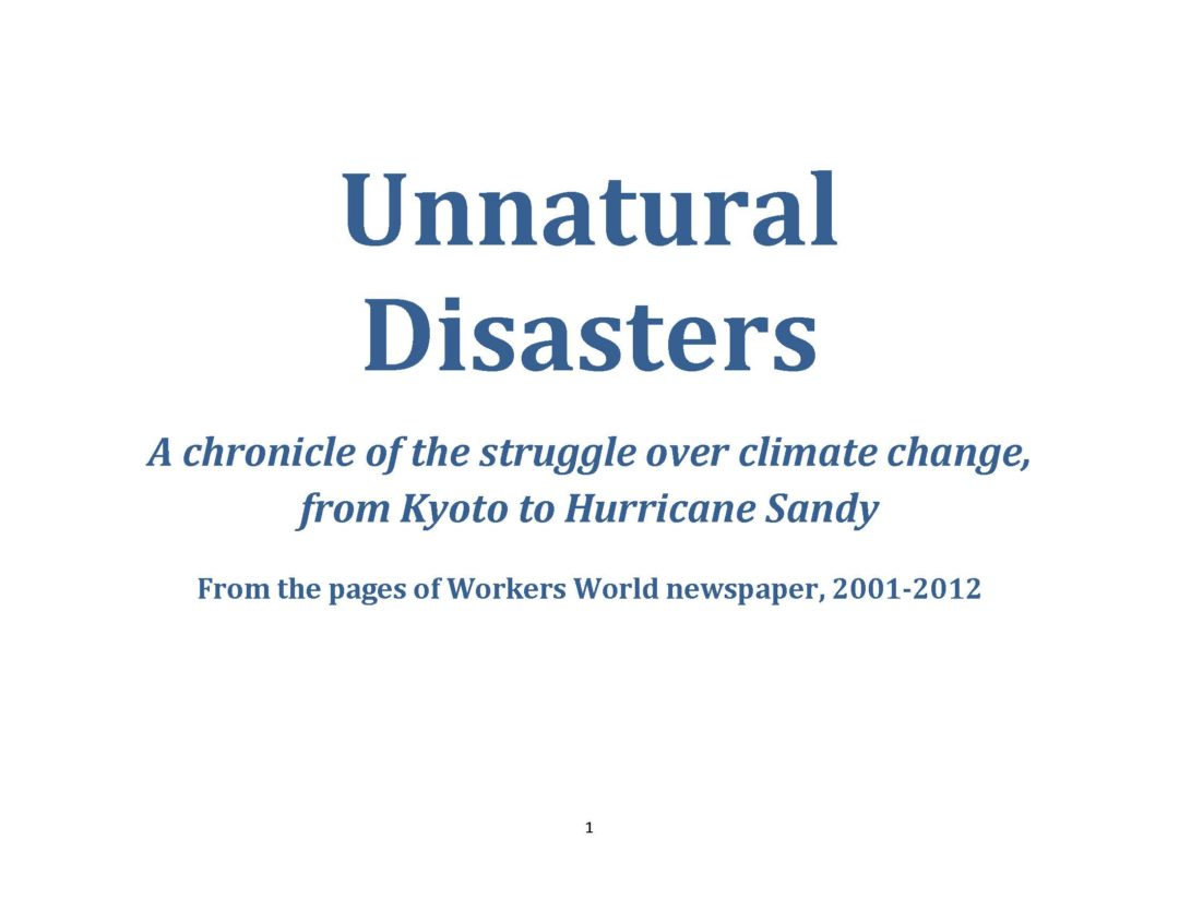 Book Cover: Unnatural disasters