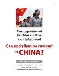 Book Cover: Can socialism be revived in China?
