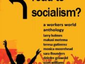 Book Cover: What Road to Socialism?